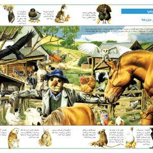 در جستجوی شگفتی های جهان حیوانات - انتشارات پیام بهاران