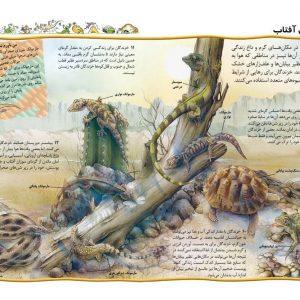 یکصد نکته (خزندگان و دوزیستان) - انتشارات پیام بهاران