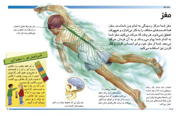 دایرةالمعارف مقدماتی دنیای شما کودکان (بدن شما) - انتشارات پیام بهاران