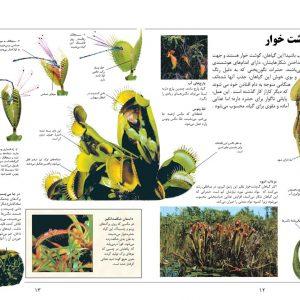 دانشنامه بزرگ کودک و نوجوان (طبیعت جهان) - انتشارات پیام بهاران