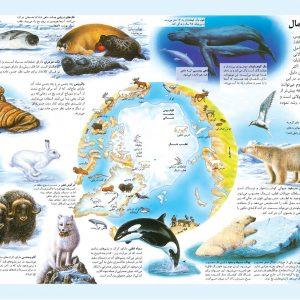 اطلس مصور کودکان، حیوانات جهان - انتشارات پیام بهاران
