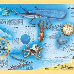 اطلس مصور کودکان، دریاها و اقیانوسهای جهان - انتشارات پیام بهاران