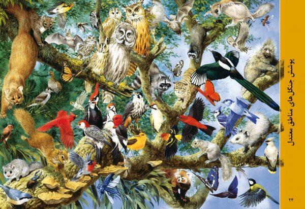 دنیای حیوانات + پوستر - انتشارات پیام بهاران